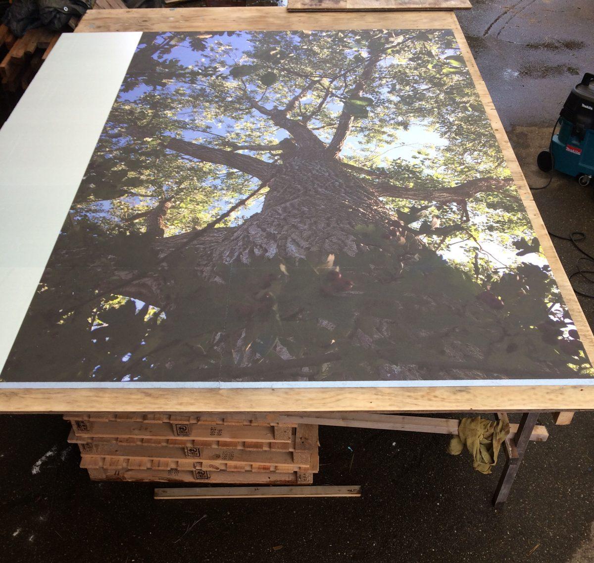 10 platen beprint